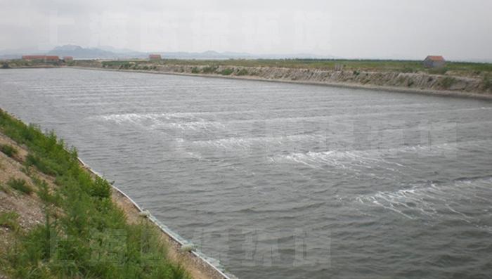 如今大量solarmba太阳能微泡曝气应用于各地多个湖泊,水库,黑臭河道及